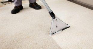 image carpet clean