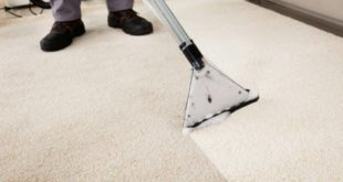 image carpet clean