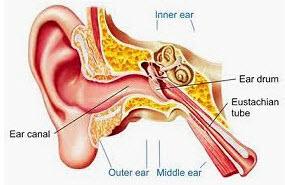 ear specialist in singapore